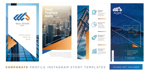 Real estate company profile instagram story template blue gold