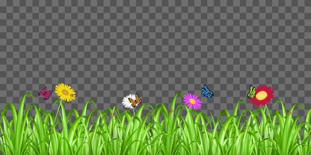 Real green grass with flower and butterfly ladybug