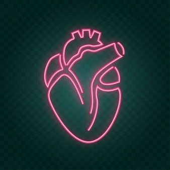 Real heart neon sign