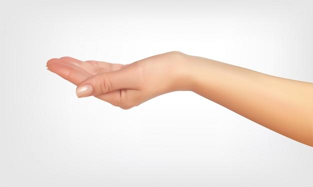 Реалистичный 3d-силуэт руки спрашивая, с формой ведра