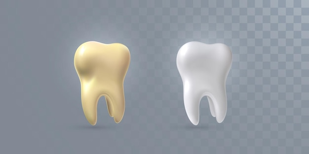 Realistic 3d teeth isolated on transparent background
