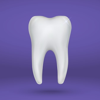 Realistic 3d tooth isolated stomatology icon