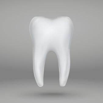 リアルな3 dの歯分離口腔病学アイコン
