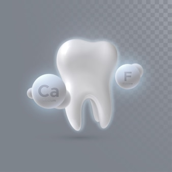 투명 배경에 고립 된 칼슘과 불소 입자와 현실적인 3d 치아 프리미엄 벡터