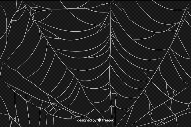 Realistic abstract design of  spider web