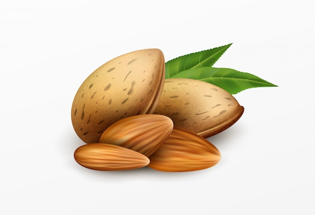 Realistic almonds with green leaves isolated on a white background. healthy eating concept.  illustration