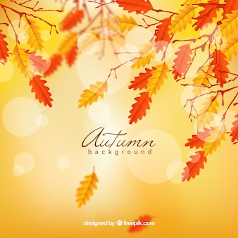Realistic autumn background with blurred leaves