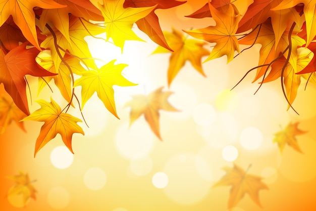 Реалистичный осенний фон с листьями
