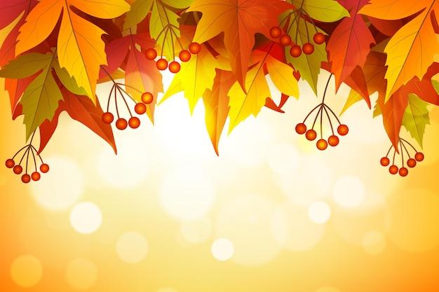 現実的な秋の背景