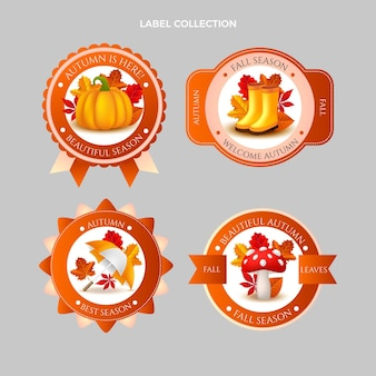 Realistic autumn labels collection