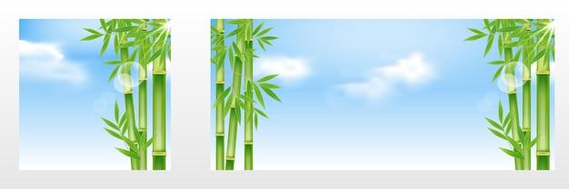 수 하늘 태양 광선 햇살 요소 디자인과 현실적인 대나무 나무 풍경 풍경 배경