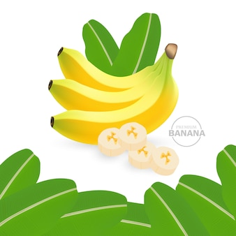 リアルなバナナのイラスト
