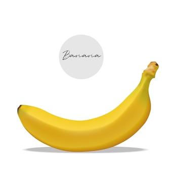 Realistic banana isolated fruit vector