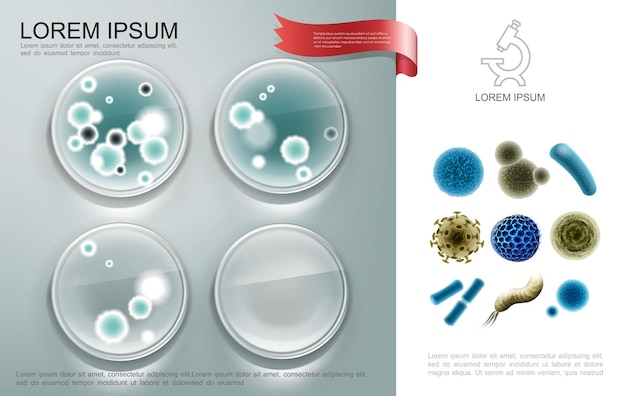 Realistic biological microorganisms composition with bacterial cells on petro dishes and different viruses and germs  illustration