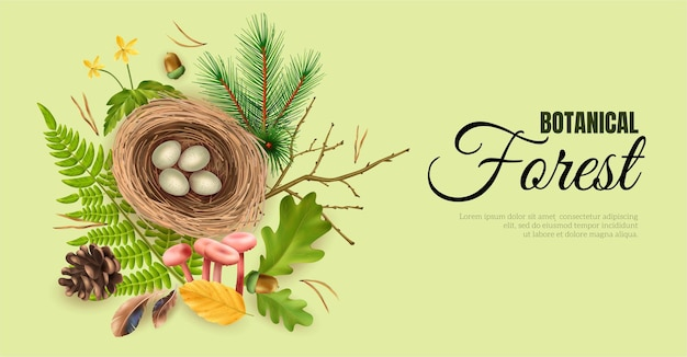 Realistic botanical forest horizontal banner with editable ornate text and birds nest with eggs and leaf images vector illustration