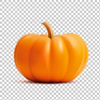 Realistic bright orange pumpkin on a grid