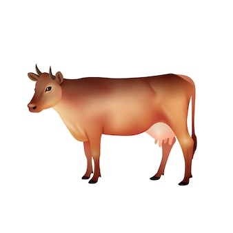 Realistic brown cow