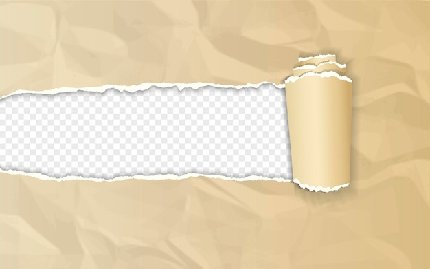 Realistic brown crumpled paper with rolled edge on transparent background