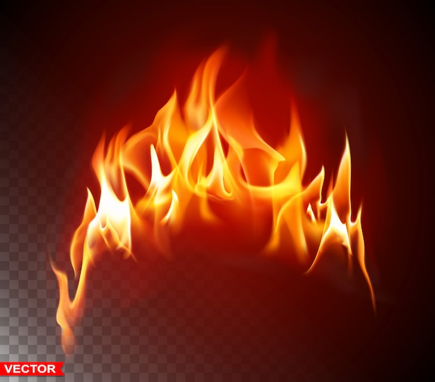 Realistic burning fire flame bright element