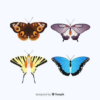Realistic butterfly collection