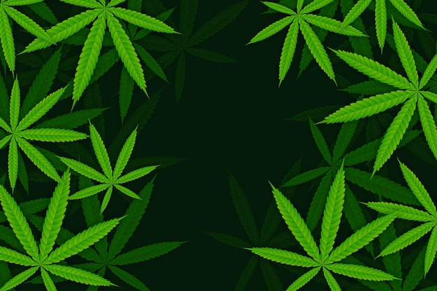 Realistic cannabis leaf background design