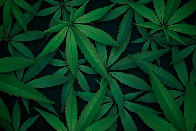 Реалистичный фон листьев конопли