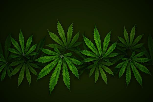 リアルな大麻の葉の背景