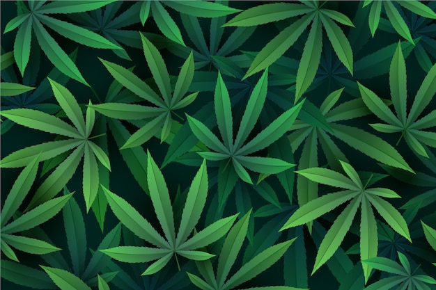 Realistic cannabis leaf background