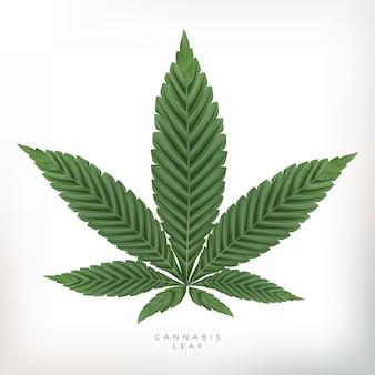 灰色の背景で現実的な大麻葉のイラスト。