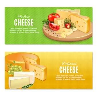 Realistic cheeses with spices and vegetables on green and yellow