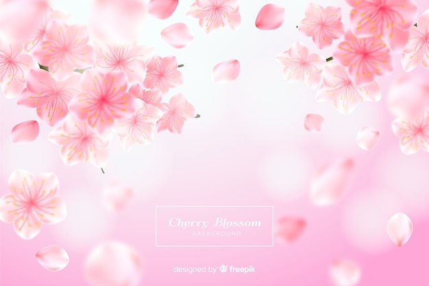 Realistic cherry blossom background