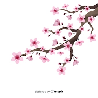 Realistic cherry blossom branch background