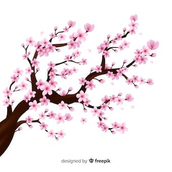 Realistic cherry blossom branch