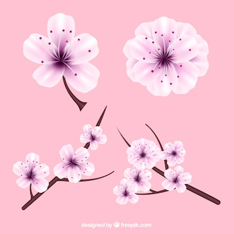 Realistic cherry blossoms with purple details