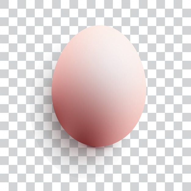 Realistic chicken egg on transparent background