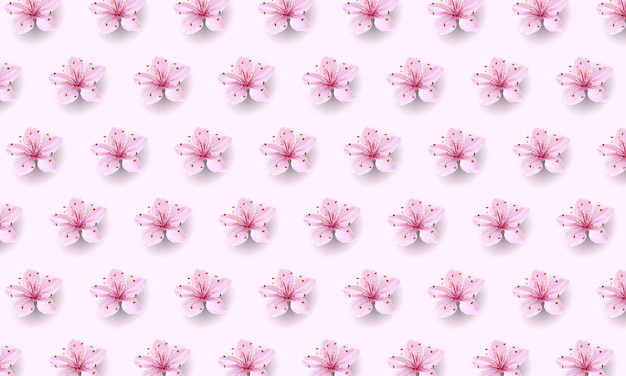 Realistic chinese pink sakura pattern on soft rose background. oriental textile design template flower blossom spring background. 3d nature backdrop illustration