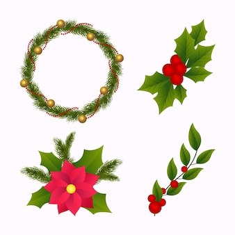 Realistic christmas flower and wreath collection