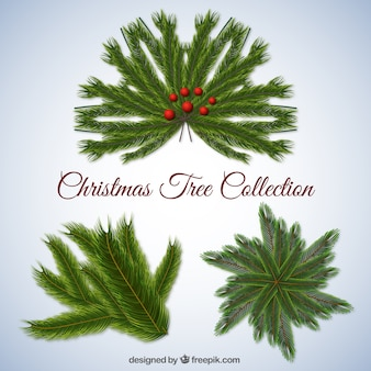 Realistic christmas tree collection