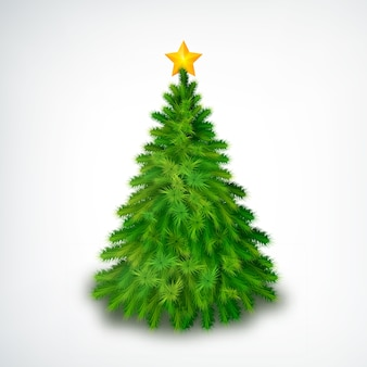 Realistic christmas tree with golden star on top on white