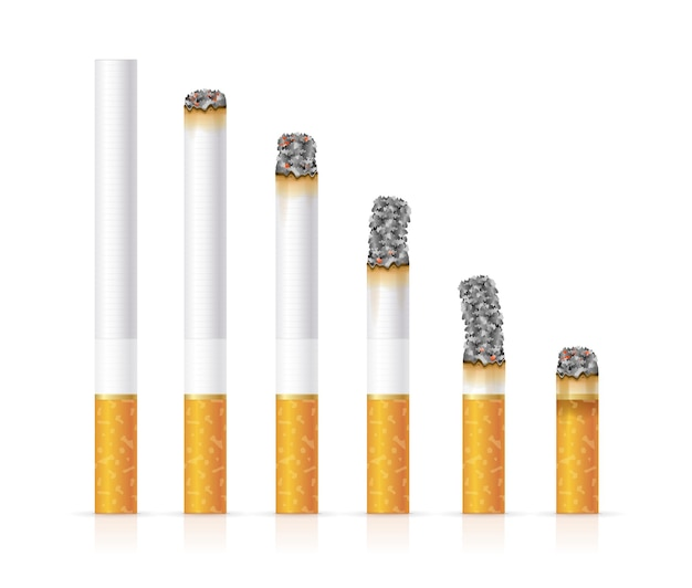 Realistic cigarette set different stages of burn