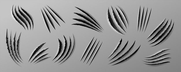 Realistic claws scratch. rough holes in paper sheet, wild animal paw marks and cat claws. vector isolated set of beast attack marks, mark animals claw, tearing background