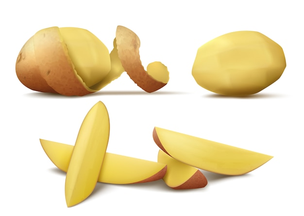 Realistic clipart with raw peeled potato, whole vegetable with brown spiral peel and slices