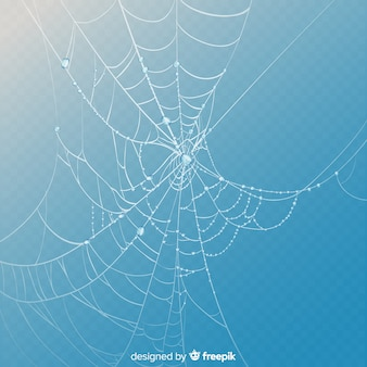 Realistic cobweb on blue sky background