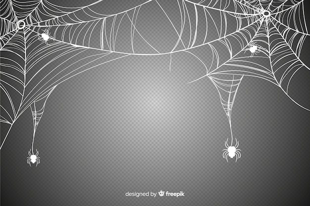 Realistic cobweb for halloween event