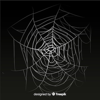 Realistic cobweb with gradient