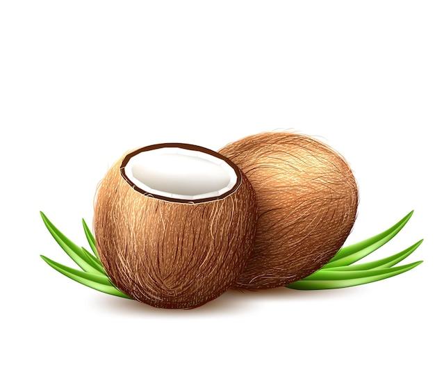 Реалистичные кокосовые экзотические фрукты с листьями.