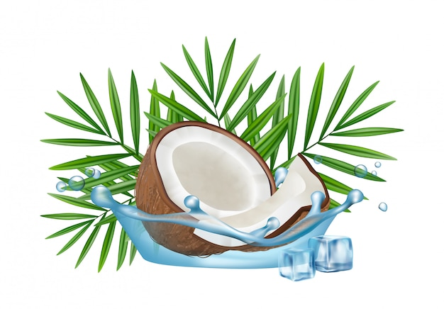 Realistic coconut in water splash, palm leaves and ice cubes isolated on white background