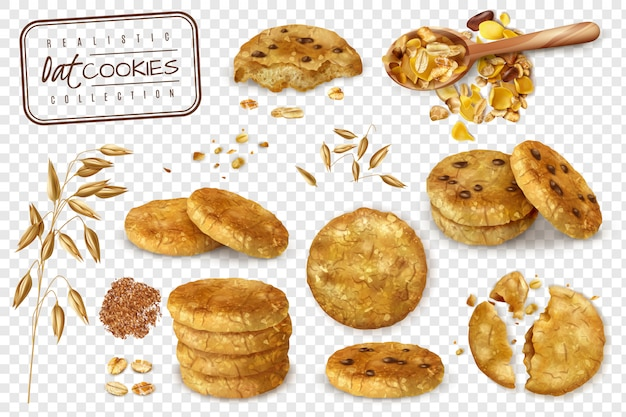 Realistic collection of oat cookies whole and halves isolated on transparent background   illustration