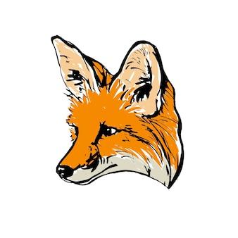 Реалистичный цветной рисунок головы лисы. для окраски. векторная иллюстрация.
