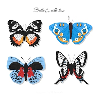 Realistic colorful butterfly collection
